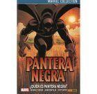Pantera Negra de Hudlin 1: ¿Quién es Pantera Negra?
